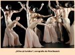 orfeu si euridice coregrafie de pinabausch
